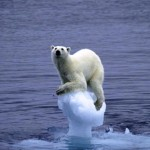 Worries of global warming are up again