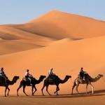 UAE: frontiers of the Arab Spring
