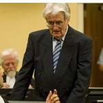 "Karadzic calls himself the ""peacemaker"""